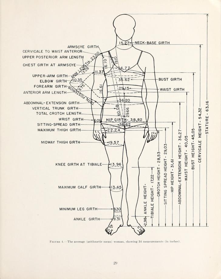 womens measurements for garment and pattern construction figure 4jpg