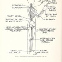Women\'s Measurements for Garment and Pattern Construction Figure 2.jpg