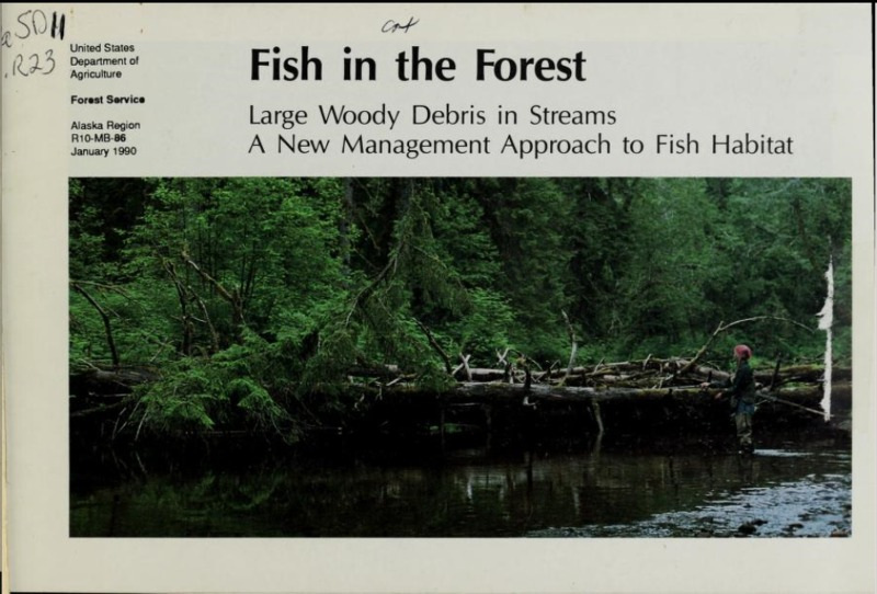 Fish in the Forest 1.PNG