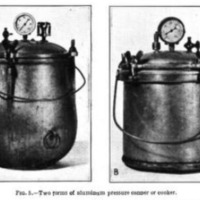 Home Canning of Fruits and Vegetables 3.PNG