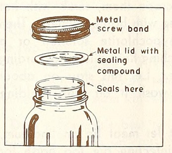 glass jar, lid, and seal