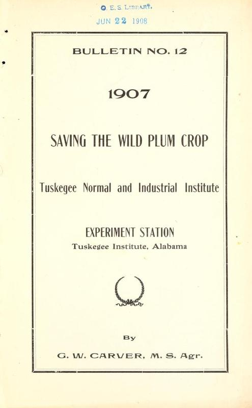 Saving the Wild Plum Crop Cover.jpg