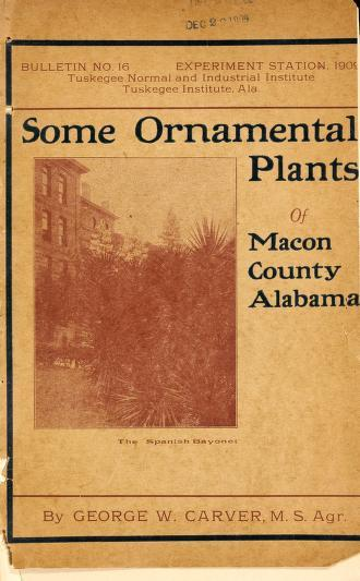 Some Ornamental Plants of Macon County, Alabama