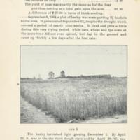Successful Yields of Small Grain 6.jpg