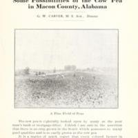 Some Possibilities of the Cow Pea in Macon County, Alabama 1.jpg