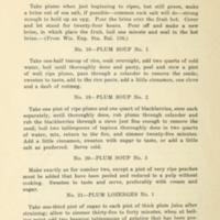 43 Ways to Save the Wild Plum Crop 6.jpg