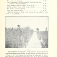 Successful Yields of Small Grain 5.jpg