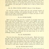 43 Ways to Save the Wild Plum Crop 7.jpg