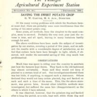 Saving the Sweet Potato Crop 1.jpg