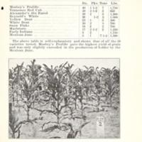Increasing the Yield of Corn 3.jpg