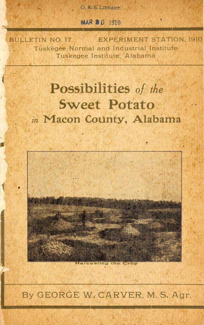 Cover of Possibilities of the Sweet Potato in Macon County, Alabama