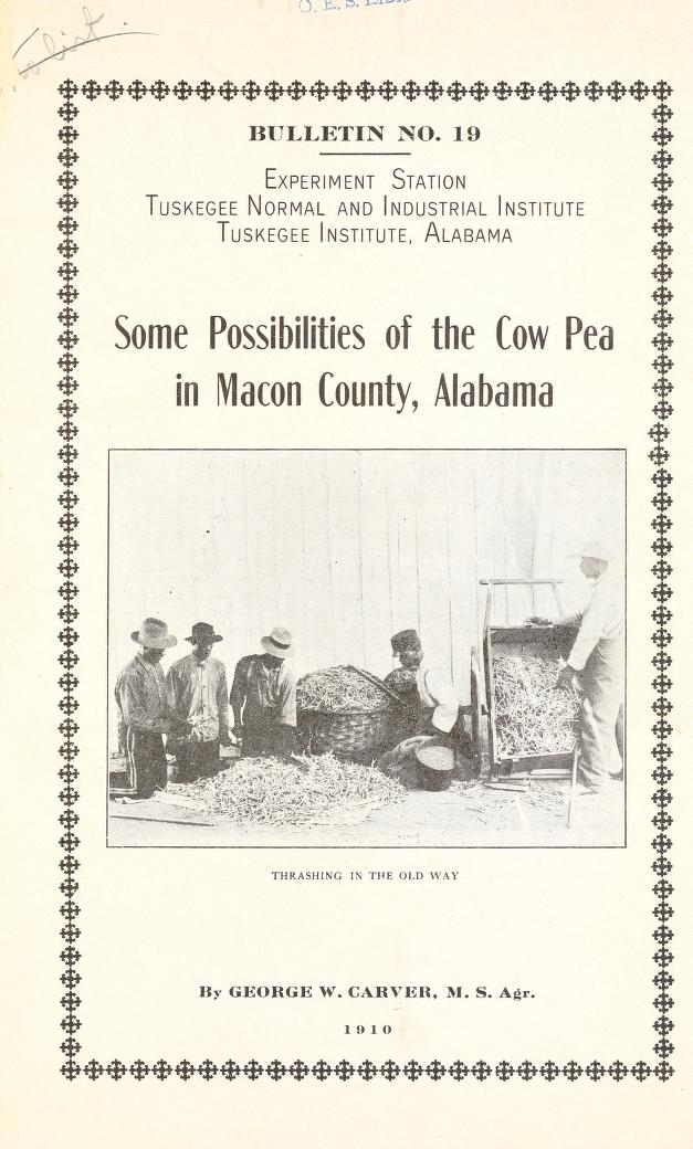 Cover of Some Possibilities of the Cow Pea in Macon County, Alabama
