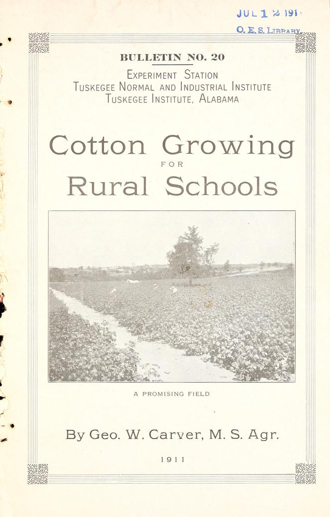 Cover of Cotton Growing for Rural Schools