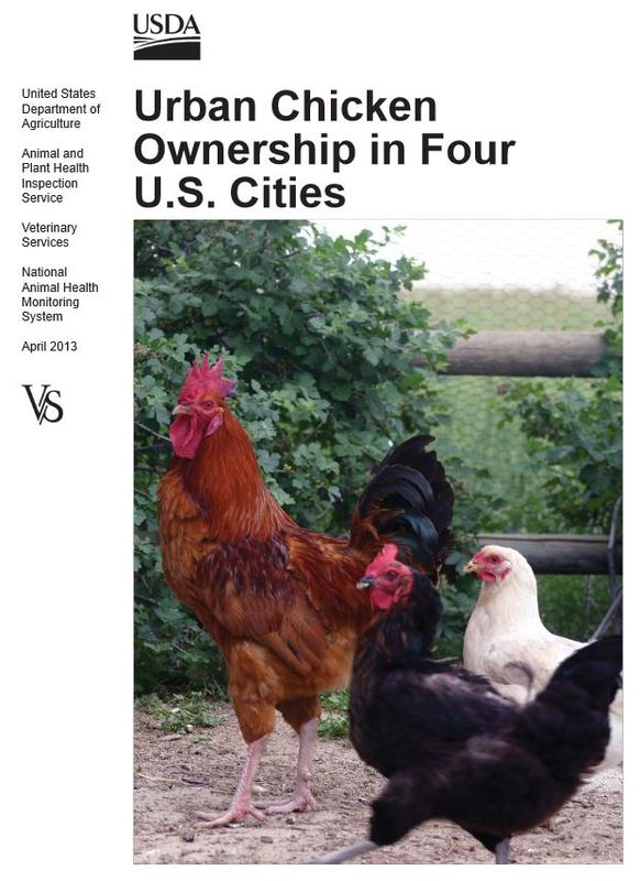 Urban Chicken Ownership in Four U.S. Cities