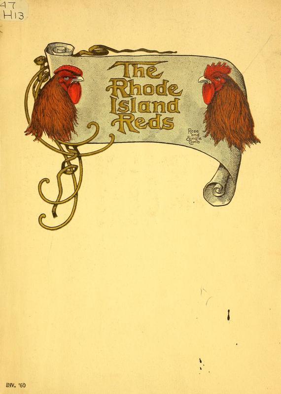 The Rhode Island Reds Cover.jpg