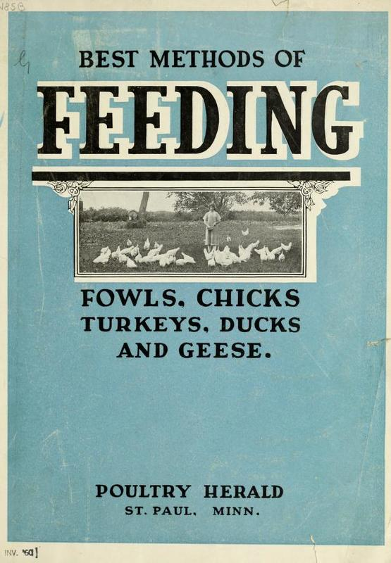 Best Methods of Feeding.jpg