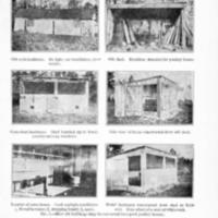 Farmers Bulletin 1113-7.jpg