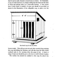 Homemade Poultry Appliances For Poultry Club Members 4.jpg