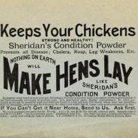 Sheridans Condition Powder.jpg