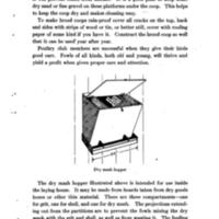 Homemade Poultry Appliances For Poultry Club Members 5.jpg
