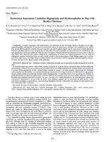 Parvovirus-Associated Cerebellar Hypoplasia and Hydrocephalus in Day Old Broiler Chickens.jpg