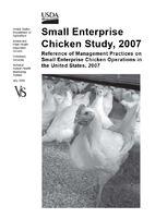 Small Enterprise Chicken Study, 2007.JPG