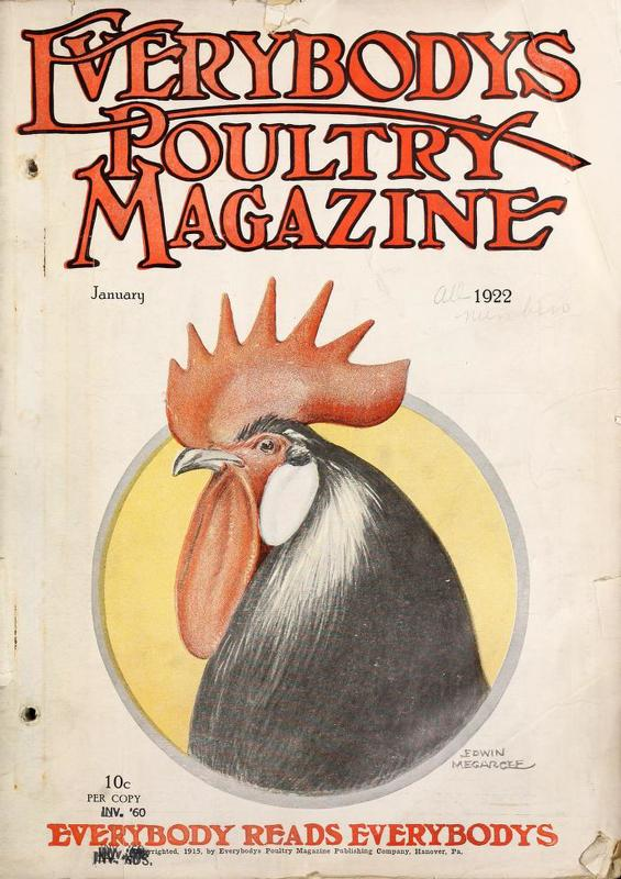 Everybodys Poultry Magazine