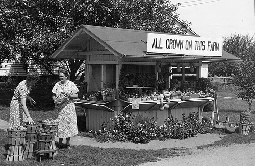 A roadside market operated by a local farmwoman in Hampshire County, Massachusetts in September 1940. Photo courtesy of National Archives and Records Administration.