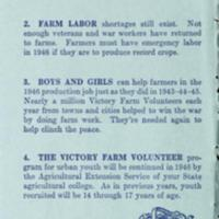Youth Learns and Earns While Helping on Farms With the Victory Farm Volunteers 2.jpg