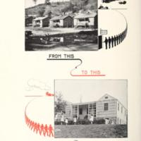 A Homestead and Hope Illustration.jpg