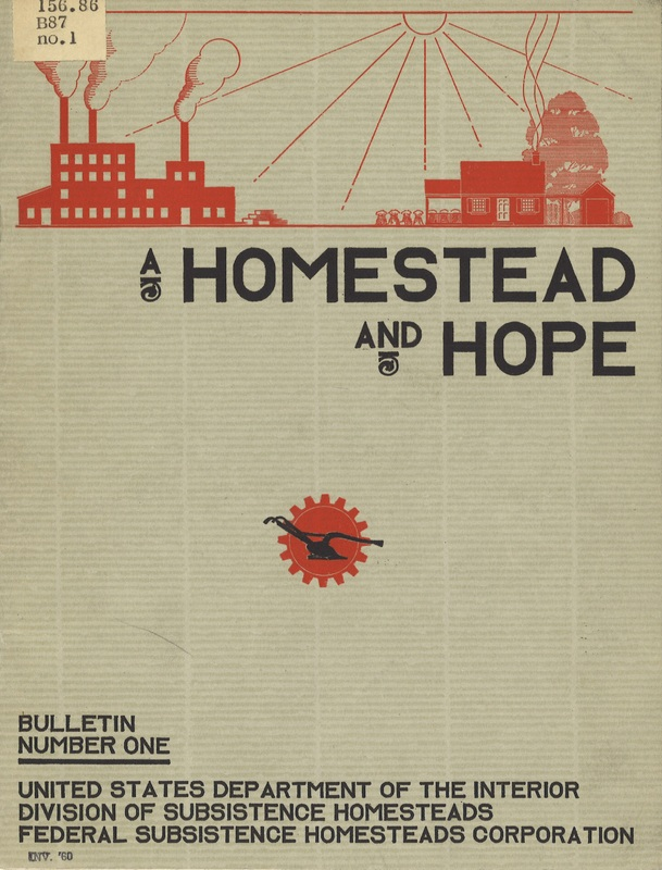 Cover of A Homestead and Hope