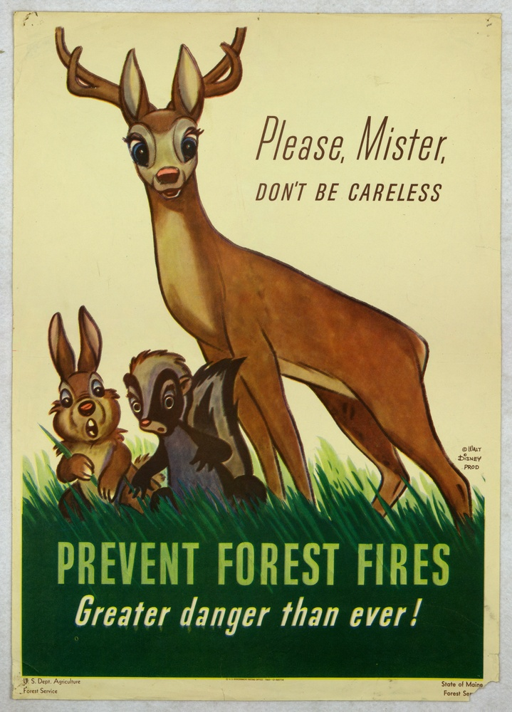 slogan about save the forest fire Go here to see some more slogan examples and find out the perfect slogan formula for creating a catchy slogan that brings in more customers this is one group of student's project, it is all about the coniferous forest, the climate that is there and the animals that thrive and live in them.