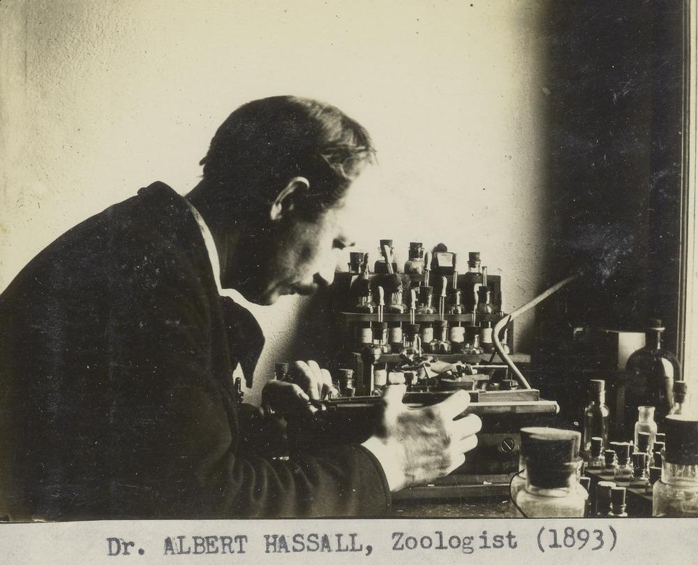 *Albert Hassall
