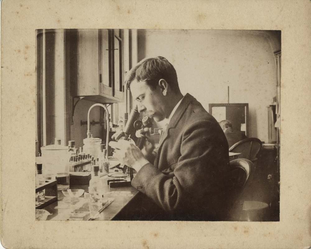Charles Wardell Stiles, 1893