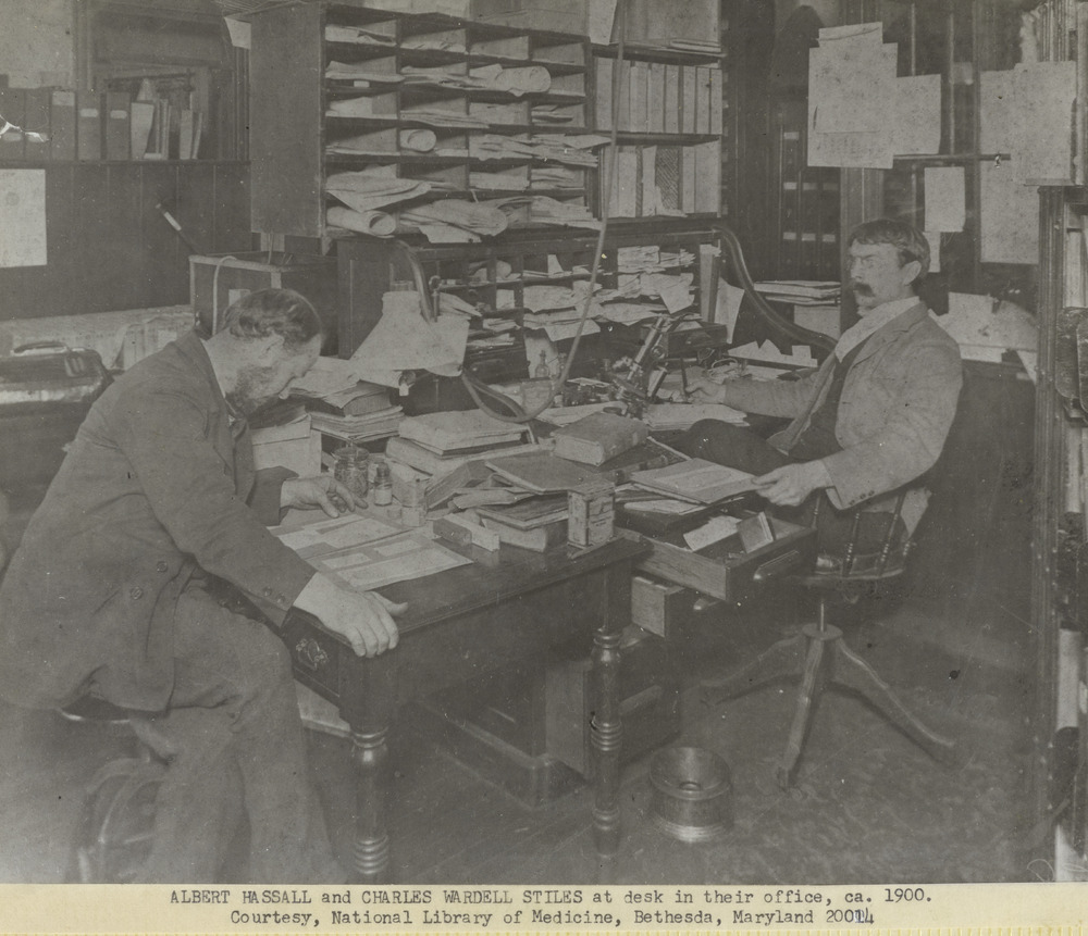 Thumbnail for the first (or only) page of Albert Hassall and Charles Wardell Stiles at desk in their office.