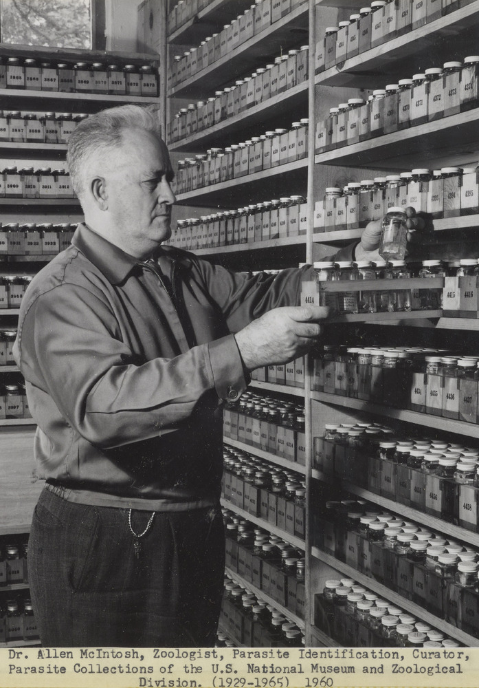 Dr. Allen McIntosh, Zoologist, Parasite Identification, Curator, Parasite Collections of the U.S. National Museum and Zoological Division (1929-1965)