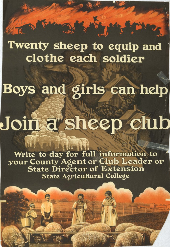 Twenty sheep to equip and clothe each soldier: Boys and girls can help: Join a sheep club