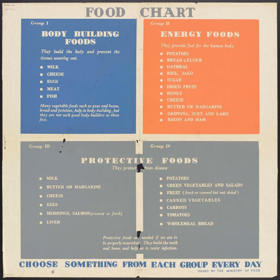 Food Chart Building Food Energy Food Protective