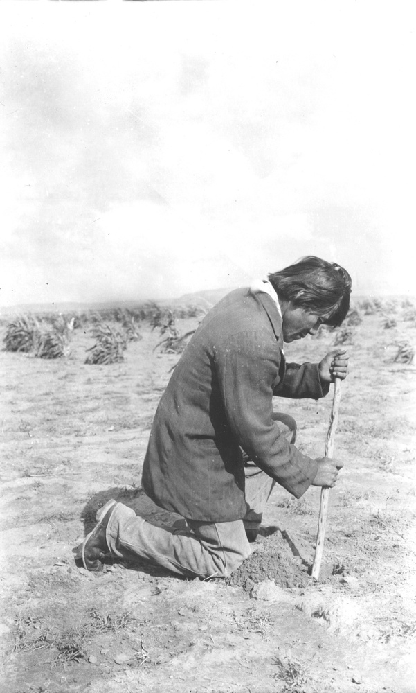 Hopi boy planting corn