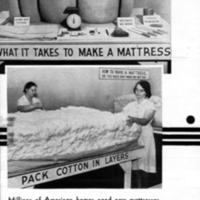 Cotton Mattress Making, p.2