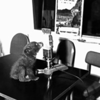 Young Smokey on ABC Radio