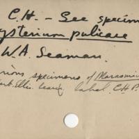 Handwriting sample: Charles Horton Peck