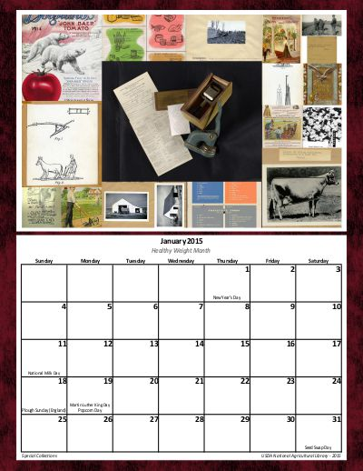 Collage of January's images with a calendar grid below.