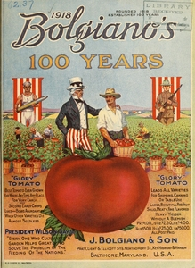 "Thumbnail for the first (or only) page of Bolgiano's 100 years ""glory"" tomato by J. Bolgiano & Son, Baltimore, Maryland."