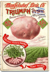 Thumbnail for the first (or only) page of Mangelsdorf Bros. Co., Triumph Seeds and Plants.