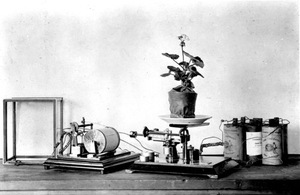 Thumbnail for the first (or only) page of Electric transpiration apparatus, set up by Woods..