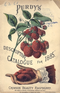 Thumbnail for the first (or only) page of Front Cover of Purdy's Descriptive Catalogue for 1885.