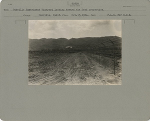 Thumbnail for the first (or only) page of Looking toward the Doak properties.