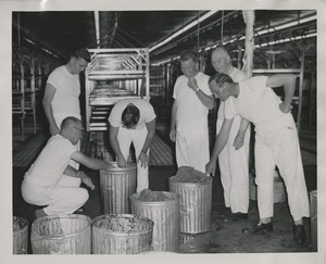 Thumbnail for the first (or only) page of Edward F. Knipling and colleagues inspecting ground at Mission, Texas plant. Knipling on far right..