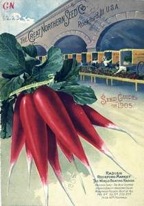 Thumbnail for the first (or only) page of Front Cover of The Great Northern Seed Co..